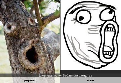 Дерево-мем