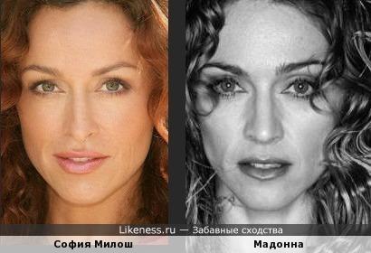 София и Мадонна