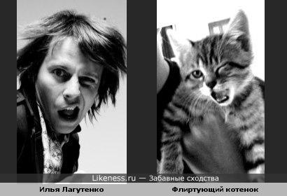 Илья Лагутенко похож на флиртующего котенка