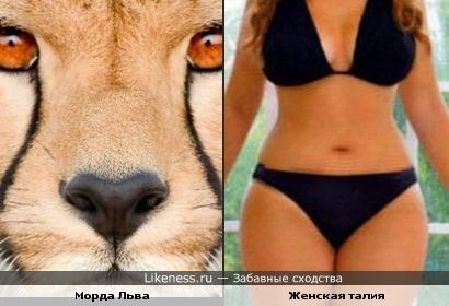 В каждой женщине есть что-то от львицы)