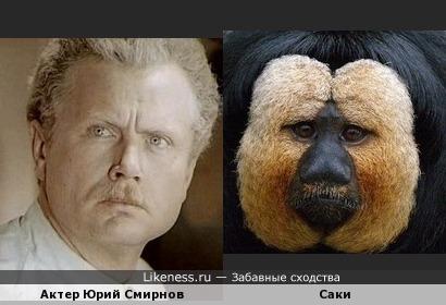 Почему-то мне их лица кажутся похожими... А вам?...:)