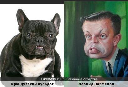 Бульдог и Леонид Парфенов на карикатуре похожи.