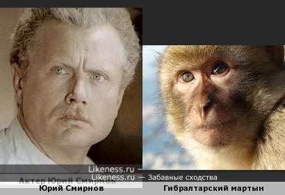 Актер Юрий Смирнов и примат -дубль 2