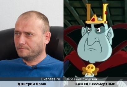 Дмитрий Ярош похож на Кощея Бессмертного (из мультика)