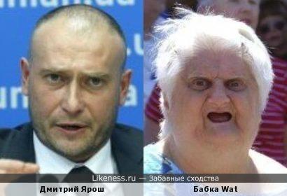"""Дмитрий Ярош похож на бабку (""""Шта?"""")"""