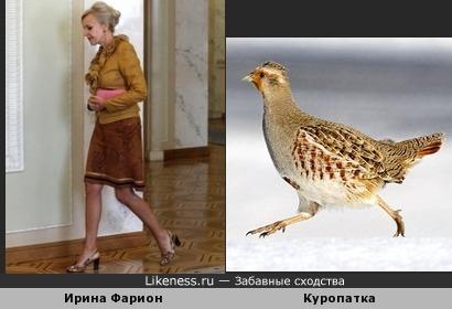 Ирина Фарион похожа на бегущую куропатку