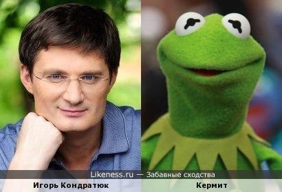 Игорь Кондратюк похож на лягушонка Кермита