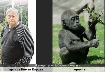 Роман Карцев напоминает гориллу
