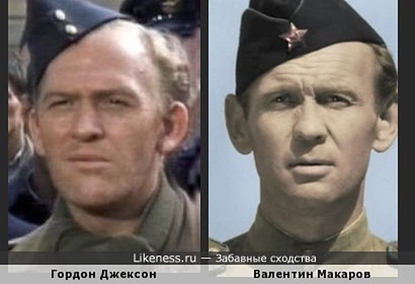 Два лопоухих солдатика :)