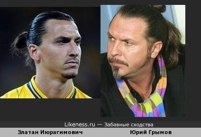 Златан Ибрагимович похож на Юрия Грымова