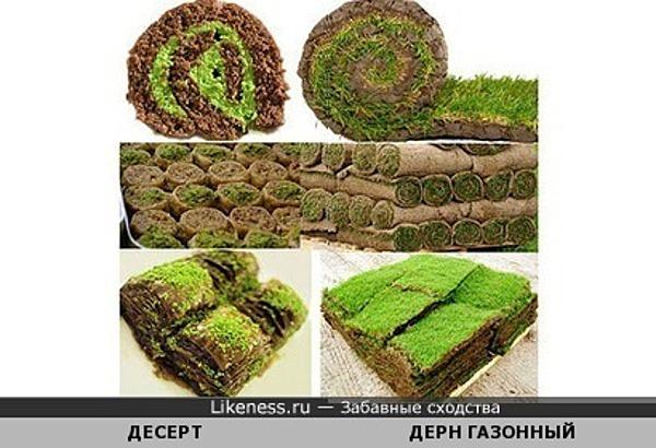 А на сладкое - газон. В рулонах и пластами он похож на турецкие сладости.