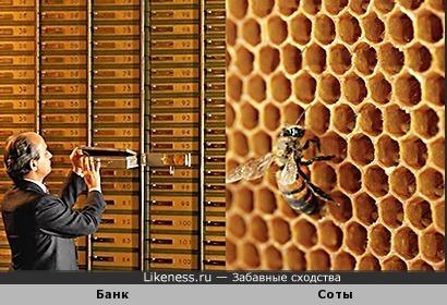 Банковские ячейки и пчелиные соты