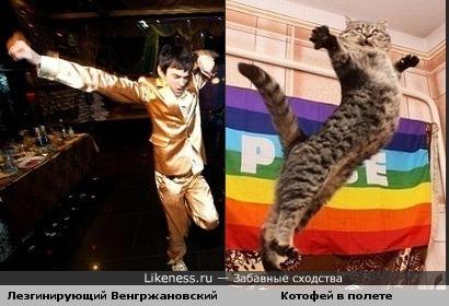 Шурупов похож на летящего кота