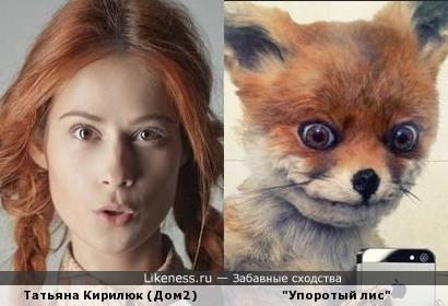 """Татьяна Кирилюк и """"Упоротый лис""""."""