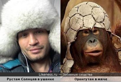 Орангутан и Рустам Солнцев (Дом-2).