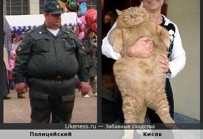 Родственные души )