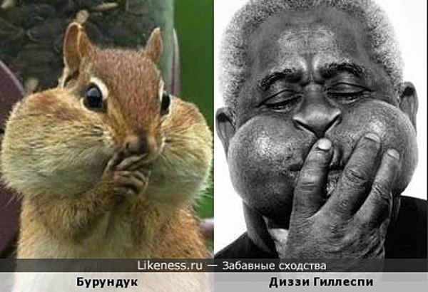 Родственные души-2 )