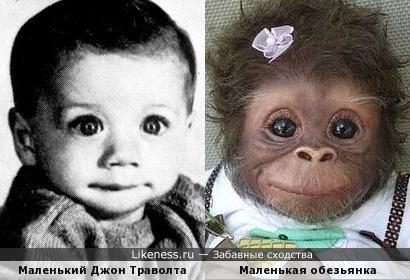 Вот на кого еще похож маленький Джон Траволта. )