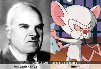 Николай Камов и Брейн