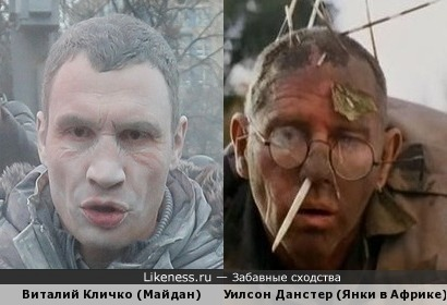Пенистый Кличко и херр Дайхер ауф дер Хайт после нападения дикобраза.