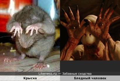 Крыска и Бледный человек
