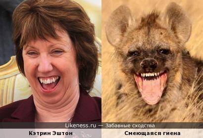 Кэтрин Эштон похожа на смеющуюся гиену
