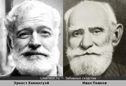 Писатель и академик