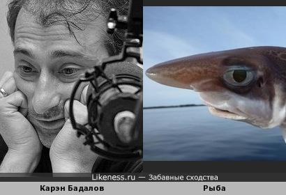 Рыба напомнила Карэна Бадалова