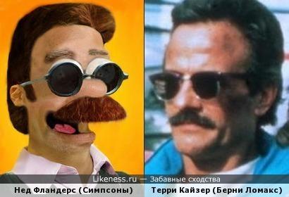 Нед Фландерс похож на Берни Ломакса