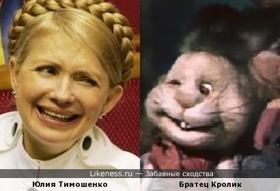 Тимошенко похожа на кролика из мультфильма