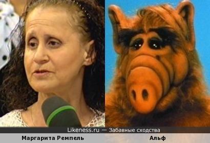 Маргарита Ремпель похожа на Альфа
