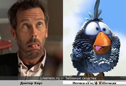 Доктор Хаус похож на птичка из м/ф О птичках
