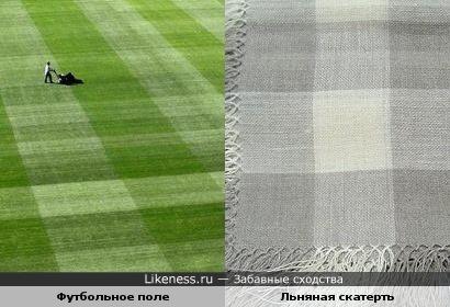 Футбольное поле похоже на скатерть в клеточку