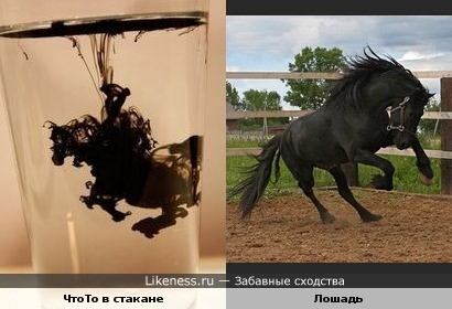 ЧтоТо в стакане похоже на лошадь))
