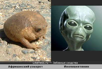 Все инопланетяне родом с Земли