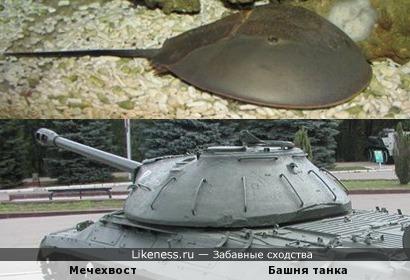 Мечехвост напоминает башню танка