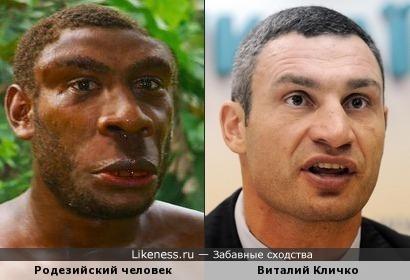 Реконструкция родезийского человека чем-то напомнила Виталия Кличко
