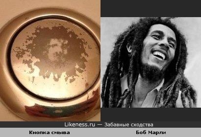 Кнопка смыва похожа на Боба Марли