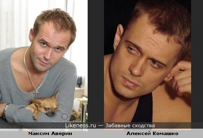 Максим Аверин похож на Алексея Комашко