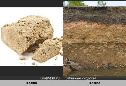 Когда копаешь землю,почему-то хочется халвы