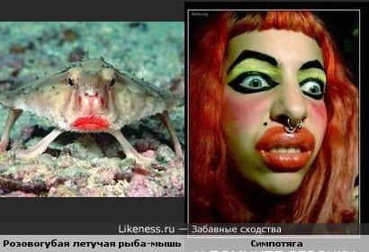 Рыбка-мышь напомнила дЭвушку