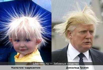 Кто знает.....может это детское фото Дональда Трампа....