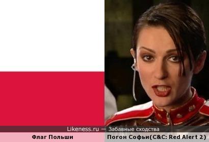В первый раз вижу, чтобы погоны красили под государственные флаги...
