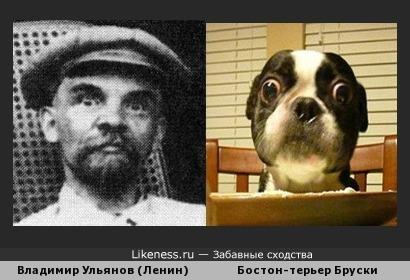 Ленин и Бруски