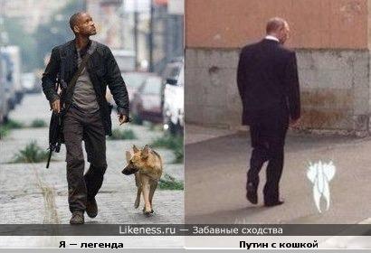 """Путин с кошкой похож на фильм """"Я — легенда"""""""