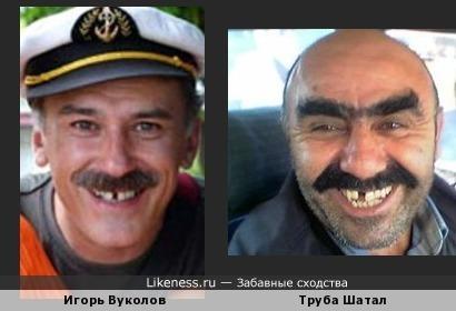 Игорь Вуколов и мужик из мема я твоя труба шатал