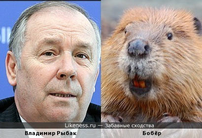 Глава Верховной Рады Владимир Рыбак
