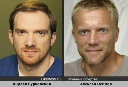 Андрей Бурковский похож на Алексея Осипова