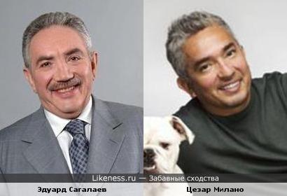 Переводчик с собачьего Цезар Милано и Эдуард Сагалаев