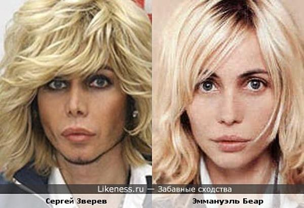 Сергей Зверев похож на Эммануэль Беар